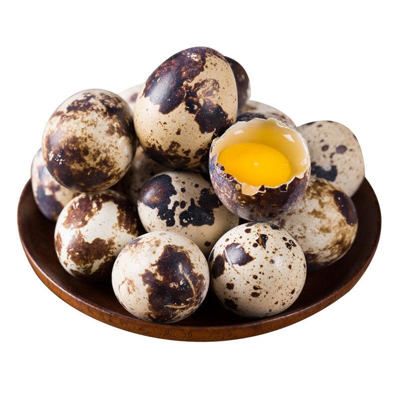 誉福园 新鲜鹌鹑蛋80枚 宝宝辅食 安心之选