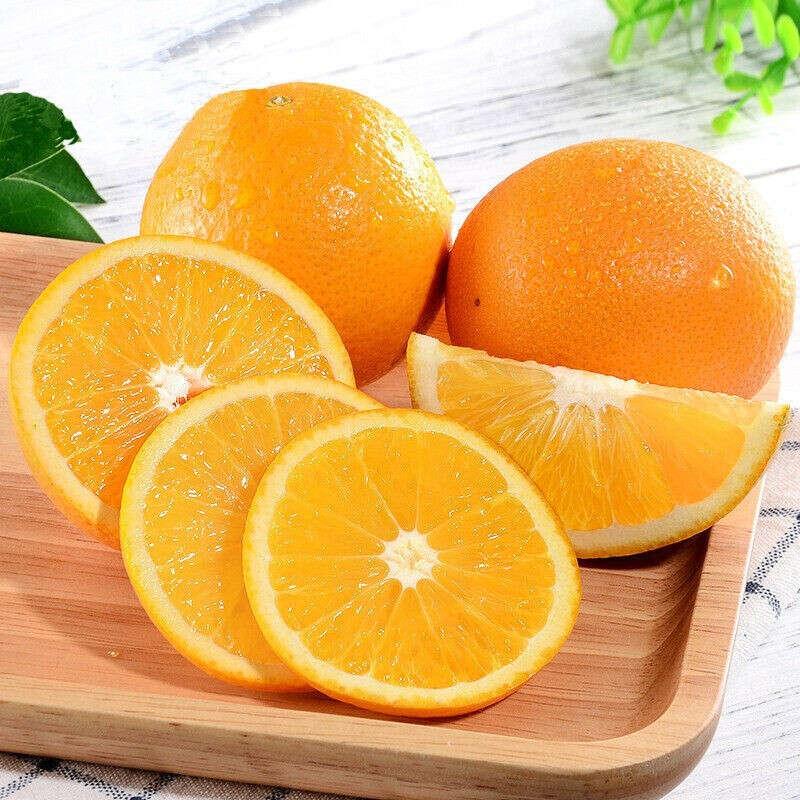 【湖北】九月紅秭歸臍橙 新鮮橙子 順豐或京東快遞 果徑70-90mm 精品果5斤