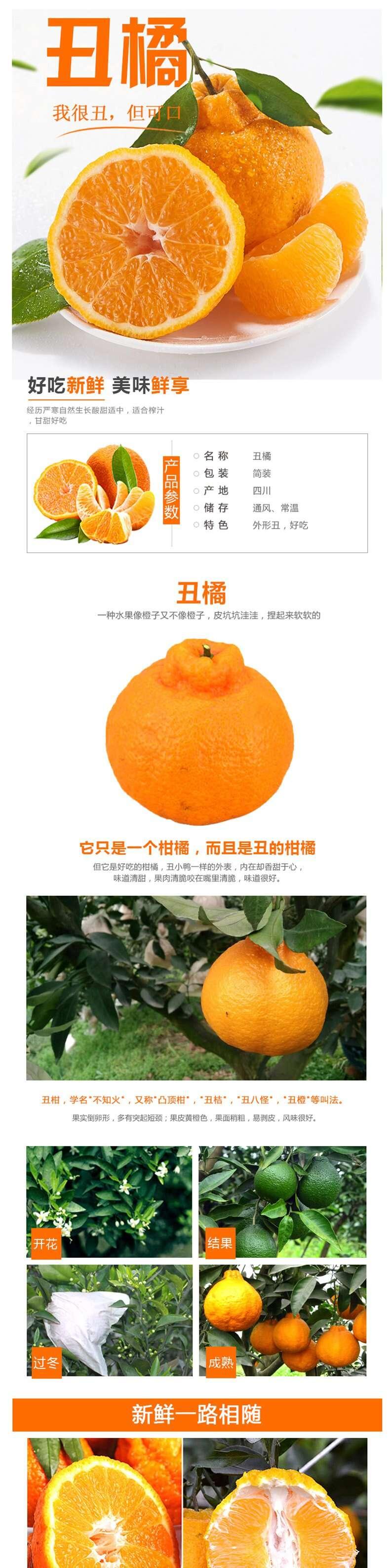 丑橘_副本_1_1.JPG