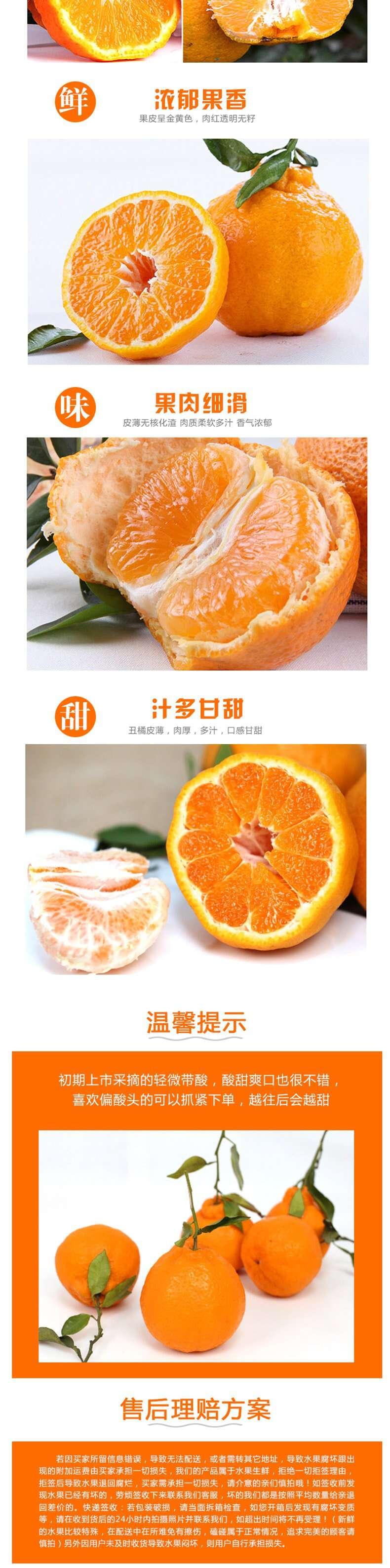 丑橘_副本_2_1.JPG